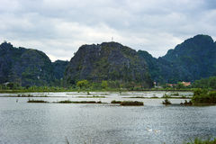 National Park Ninh Binh. Vietnam. 14-12-2013 Royalty Free Stock Image