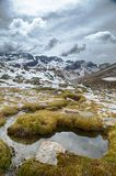 National park parque Tunari in the high Andes Near Cochabamba, Bolivia. A beautiful wild landscape ideal for hiking and trekking. Small stream and wetland stock photography