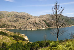 National park of Peneda Geres, Portugal Stock Photos