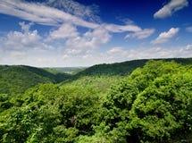 National park Podyji, Czech republic Stock Images
