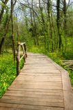National Park Ropotamo Bulgaria. Wooden bridge leads to the Ropotamo river crossing green spring forest. Royalty Free Stock Photography