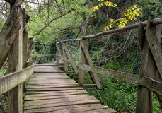 National Park Ropotamo Bulgaria. Wooden bridge leads to the Ropotamo river crossing green spring forest Royalty Free Stock Photo