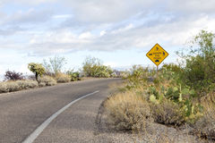 National park shared road usages sign. Saguaro National Park East's multiuse Share the Road sign.  Cactus Forest Loop Drive is used by cars, bikers, hikers Royalty Free Stock Photo