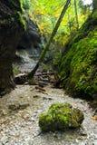 National park  - Slovak paradise, Slovakia Royalty Free Stock Photo