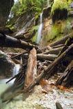 National park  - Slovak paradise, Slovakia Royalty Free Stock Image