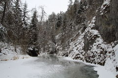 National park Slovak Paradise in winter, Slovakia Royalty Free Stock Image