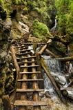 national park slovak raju Obrazy Royalty Free