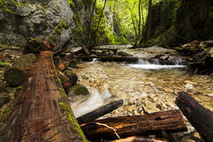 National park - Slovakian paradise, Slovakia Royalty Free Stock Photography