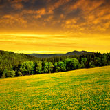 National park Sumava - Czech Republic Royalty Free Stock Photography