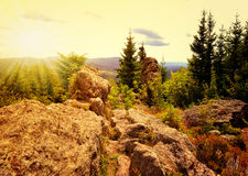 National park Sumava in Czech Republic. Sunset over the National park Sumava in Czech Republic Stock Photography