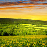 National park Sumava in Czech Republic Stock Images