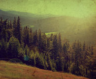 National park Sumava in Czech Republic Royalty Free Stock Photography