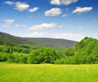 National park Sumava. Spring landscape in the national park Sumava - Czech Republic Royalty Free Stock Images
