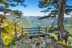 National park Tara mountain, Serbia Landscape stock photos