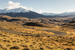 The National Park Torres del Paine, Patagonia, Chile. Empty road with a beautiful landscape in The National Park Torres del Paine, Patagonia, Chile Stock Photography