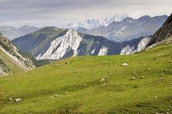 National Park Vanoise Stock Photography