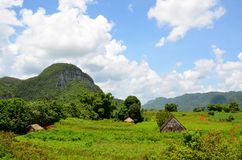 National park Vinales Royalty Free Stock Photography