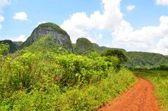 National park Vinales Stock Images