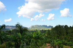 National park Vinales Stock Photography