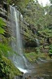 Waterfall in Tasmania. stock photos