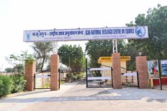 National Research Centre on Equines, Bikaner. Main entrance of National Research Centre on Equines, Bikaner. Main objectives of the centre is to improve horses stock images