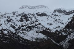 National Reserve RÃo Blanco, Mittel-Chile, ein hohes Tal der biologischen Vielfalt in Los Anden Stockbilder