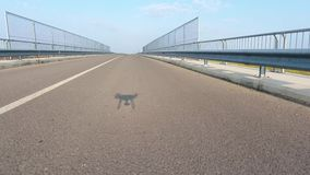 National road seen from drone stock footage