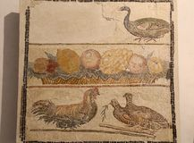The ancient roman mosaic in National Roman Museum, Roman, Italy Royalty Free Stock Images