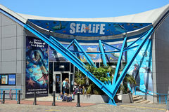 National Sea Life Centre, Birmingham. Royalty Free Stock Images