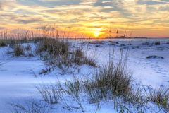 National Seashore Seaoats Sunset Royalty Free Stock Images