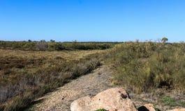 National swamp of Vila Real de Santo Antonio in porugal. Landscape overview of swamp Vila Real de Santo Antonio Stock Image