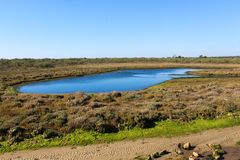 National swamp of Vila Real de Santo Antonio in porugal. Landscape overview of swamp Vila Real de Santo Antonio stock photography