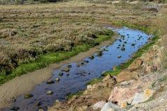National swamp of Vila Real de Santo Antonio in porugal. Landscape overview of swamp Vila Real de Santo Antonio Stock Photos