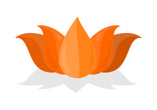 National Symbol of India. Lotus Flower Isolated Stock Photo