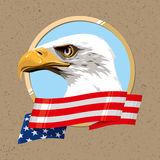 The national symbol of the USA. The national symbol of the United States of America Stock Images