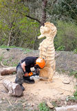 National Trust Wood Sculptor Royalty Free Stock Photo
