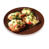 National Ukrainian dish potato pancake Stock Image