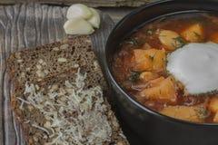 Borsch. National Ukrainian Dish - Ukrainian Borsch Royalty Free Stock Images