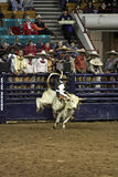 National Western Stock Show - Mexican Rodeo Royalty Free Stock Photos