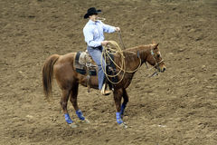 National Western Stock Show - Rodeo Stock Images