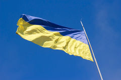 The national yellow-blue flag of Ukraine waving on the wind, against clear blue sky. Ukrainian symbol Stock Photography