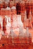 Nationale het parkongeluksboden van Bryce Stock Afbeelding