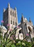 Nationale Kathedraal. Royalty-vrije Stock Afbeeldingen