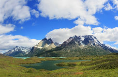 Nationale Park Torres del Paine Stock Afbeeldingen