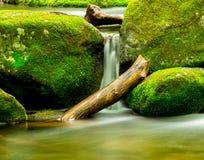 Nationale Park van de stroom het Grote Rokerige Berg stock fotografie