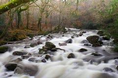 Nationale park van Shaugh het vroegere dartmoor, Devon Stock Afbeelding