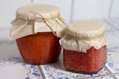 Nationale Russische mierikswortelsaus en tomaten Royalty-vrije Stock Fotografie