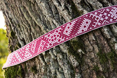 Nationale Sonderzeichen von Lettland- - Lielvarde-Gurt um den Baum stockbilder