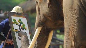 Nationale Thaise Olifantsdag stock video