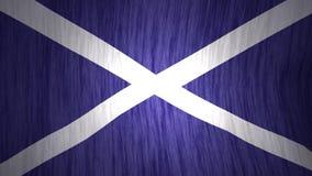 Nationale vlag die van Schotland in wind golven stock footage